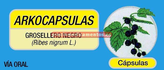 Caja ARKOCÁPSULAS GROSELLERO NEGRO 340 mg 48 cápsulas