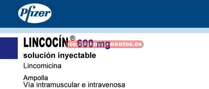 Caja LINCOCIN 600 mg 1 ampolla 2 ml