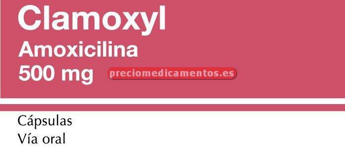 Caja CLAMOXYL 500 mg 20 cápsulas