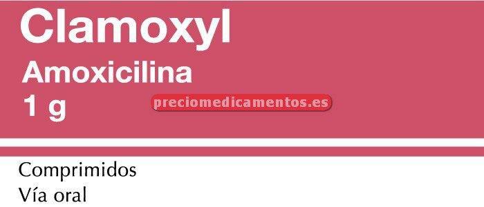 Caja CLAMOXYL 1 g 30 comprimidos